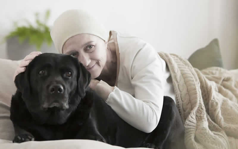 cancer owner in bed with labrador